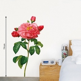 Sticker de perete ''Trandafir roz cu boboci''