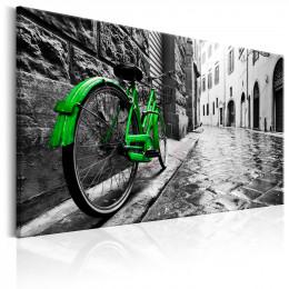 Tablou canvas Bicicleta verde vintage