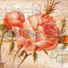 Tablou ''Trandafir cu boboci'' inramat