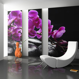 Fototapet - Relaxing moment: orchid flower and stones