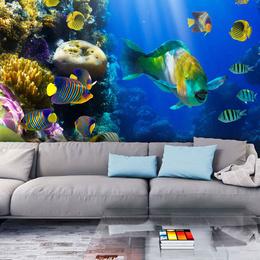 Fototapet - Underwater paradise