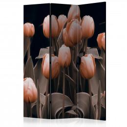 Paravan - Ladies among the flowers [Room Dividers]