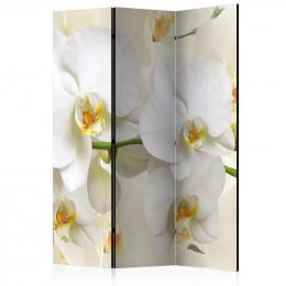 Paravan - Orchid Branch [Room Dividers]