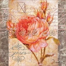 Poster Colaj cu trandafir