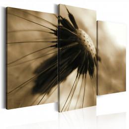 Tablou - A dandelion in sepia