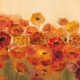 Tablou cu flori ''Lan de maci'' inramat