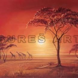 Tablou decorativ Africa inramat, 50x60 cm