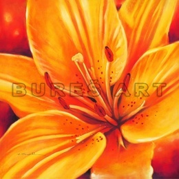Tablou decorativ ''Crin portocaliu'' inramat