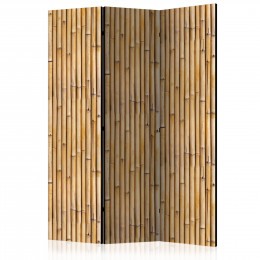 Paravan - Amazonian Wall [Room Dividers]