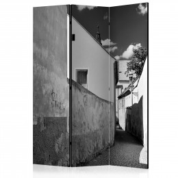 Paravan - Narrow Street [Room Dividers]