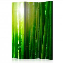 Paravan - Sun and bamboo [Room Dividers]