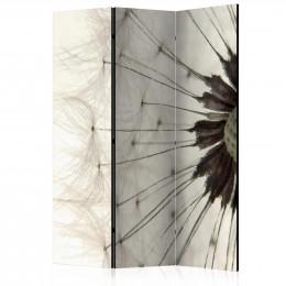 Paravan - White Dandelion [Room Dividers]