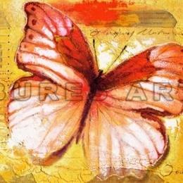 Tablou decorativ ''Fluture I'' inramat