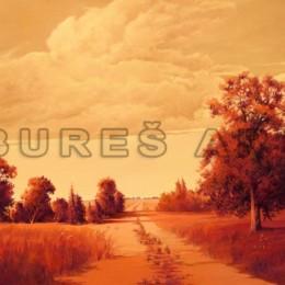 Tablou decorativ Peisaj de toamna inramat, 70x90cm