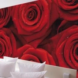 Fototapet floral Mare de trandafiri