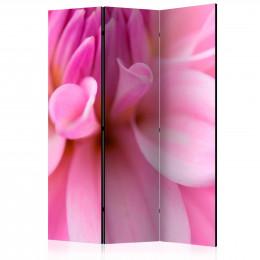 Paravan - Flower petals - dahlia [Room Dividers]