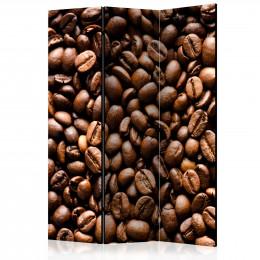 Paravan - Roasted coffee beans [Room Dividers]