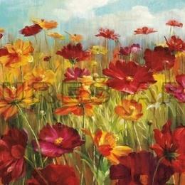 Tablou ''Camp cu flori'' inramat