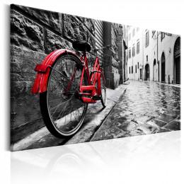 Tablou canvas Bicicleta rosie vintage