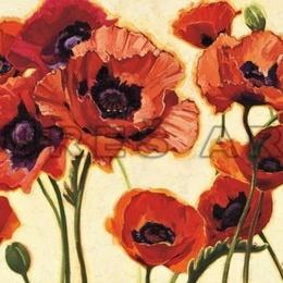 Tablou cu flori ''Maci rosii'' inramat