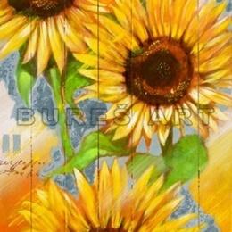 Tablou Floarea soarelui inramat