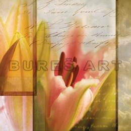 Tablou floral Poem cu lalea