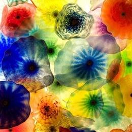 Tablou Flori de sticla inramat