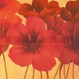 Tablou ''Flori spaniole de lotus'' inramat