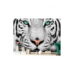 Fototapet Tigrul alb