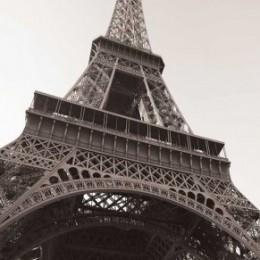 Fototapet pentru usa Sub Turnul Eiffel