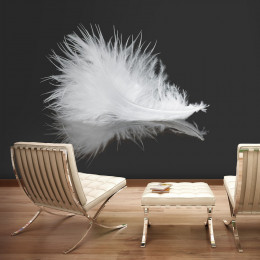 Fototapet - White feather