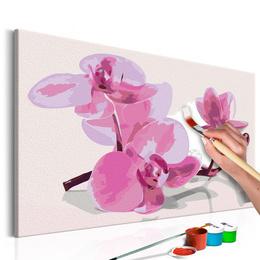 Pictura pe numere - Flori Orhidee