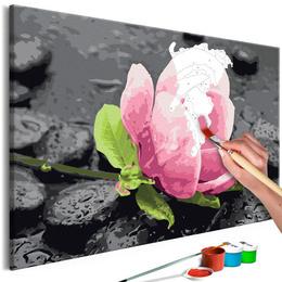 Pictura pe numere - Flori Roz si Pietre