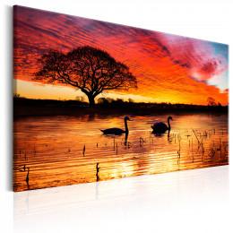 Tablou canvas Lacul lebedelor