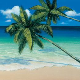 """Tablou """"Orizont tropical"""""""