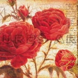 Tablou Trandafiri rosii cu boboci inramat