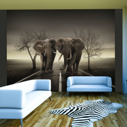 Fototapet - City of elephants