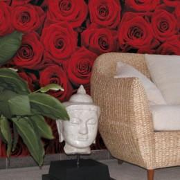 Fototapet flori Trandafiri rosii