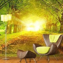 Fototapet Toamna sub bolta copacilor din parc