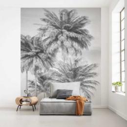 Fototapet vlies Design cu palmieri, alb-negru, 200x250 cm