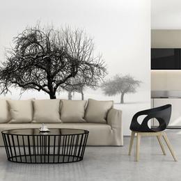 Fototapet - Winter: Trees