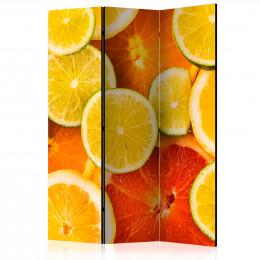 Paravan - Citrus fruits [Room Dividers]