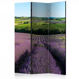 Paravan - Lavender fields [Room Dividers]