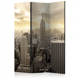Paravan - Light of New York [Room Dividers]