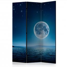 Paravan - Moonlit night [Room Dividers]