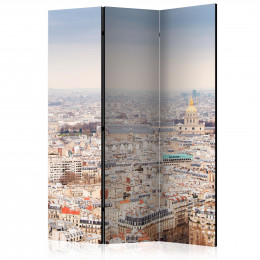 Paravan - Paris Streets [Room Dividers]