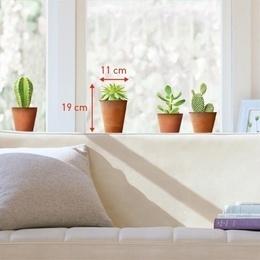 Sticker de geam ''Ghivece cu cactus''