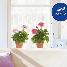 Sticker de geam '' Ghivece cu muscate''