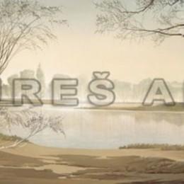 Tablou Lac si mesteceni inramat, 100x50 cm