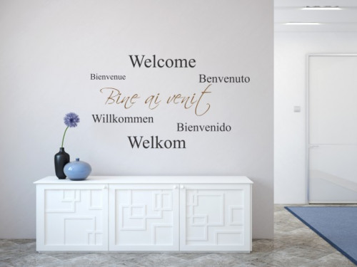 Bine ai venit!